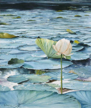 Lotus art print Ann Cockerill